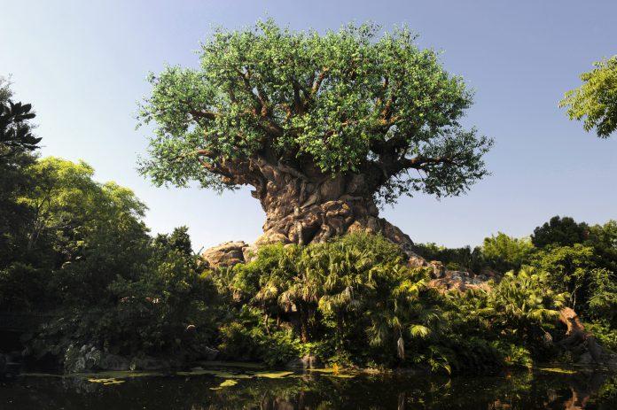 O grandeícone do Animal Kingdom, a Tree of Life (Árvore da Vida)