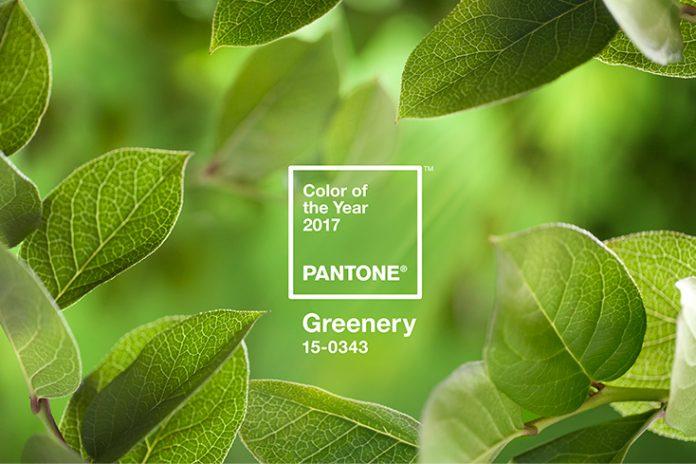 Greenery é a cor do ano 2017