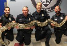 FOTO Divulgação Polícia de Pembroke Pines