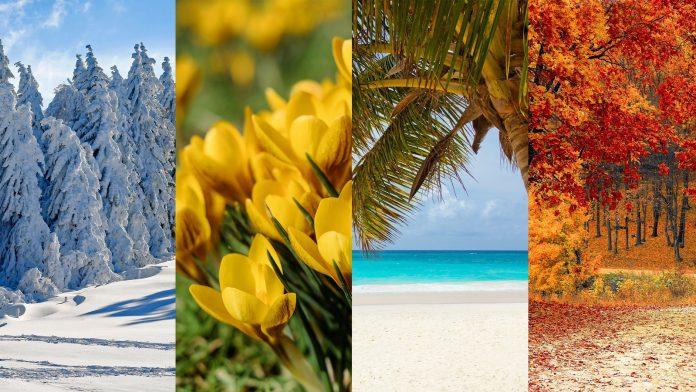 Classificações das peles brancas - Inverno, Primavera, Verão e Outono