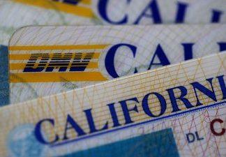 Mais de um milhão de indocumentados tiraram carteira de motorista no Estado