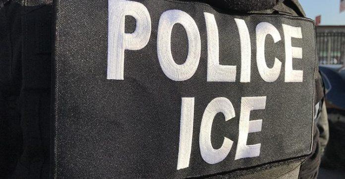 ICE prendeu 65 imigrantes indocumentados em NY e região