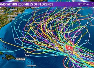Todos estão de olho em Florence