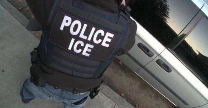Homem tenta subornar ICE para levar sua ex-mulher presa