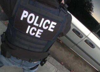 Mais de 160 imigrantes foram presos pelo ICE em cidades 'santuário'