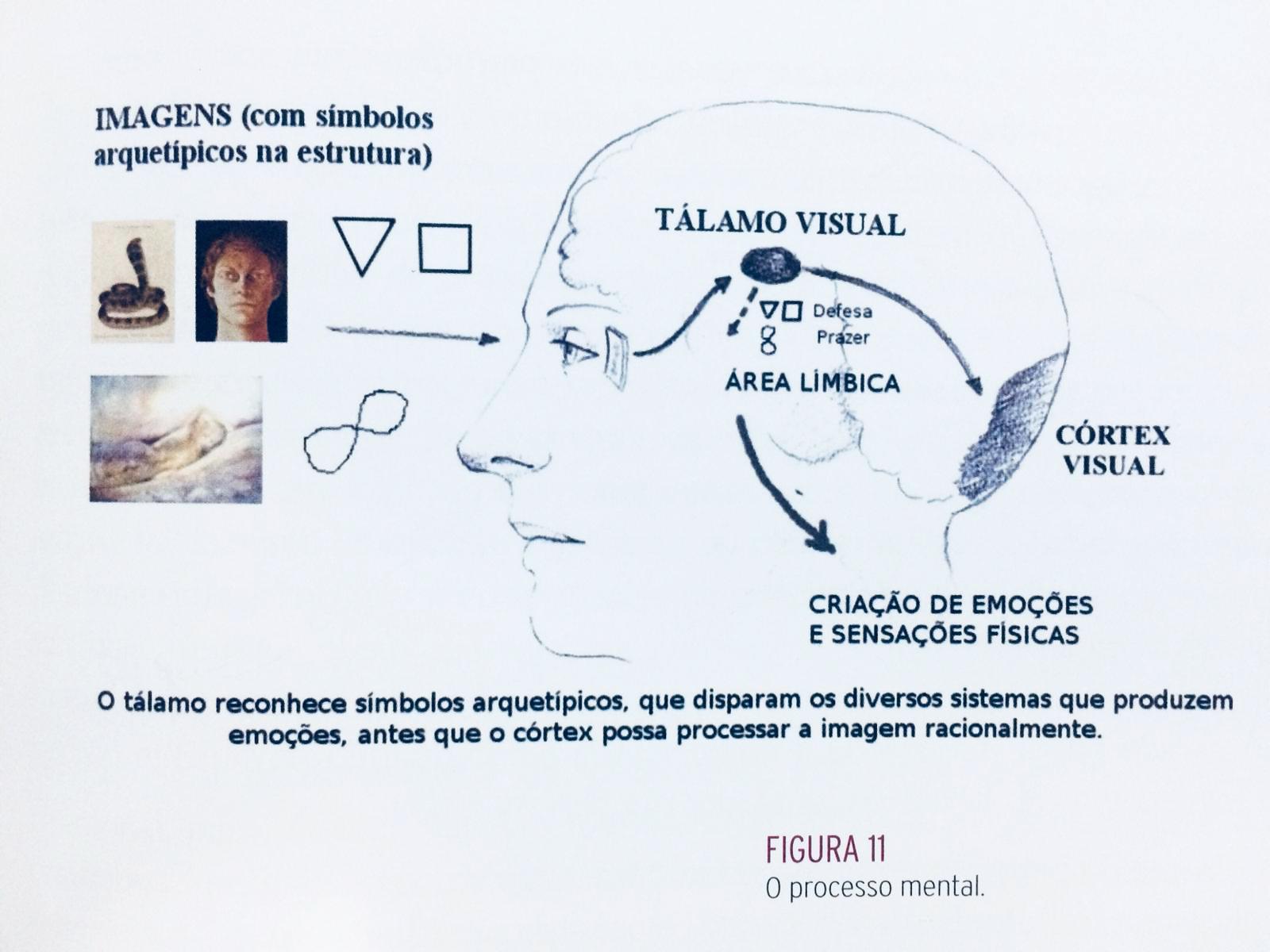 Processo Mental da Imagem (Visagismo Philip Hallawell)
