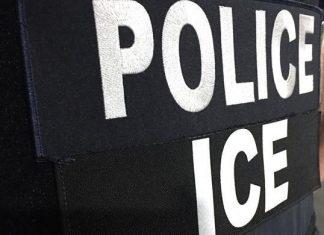 ICE prendeu 118 pessoas em operação realizada em NY