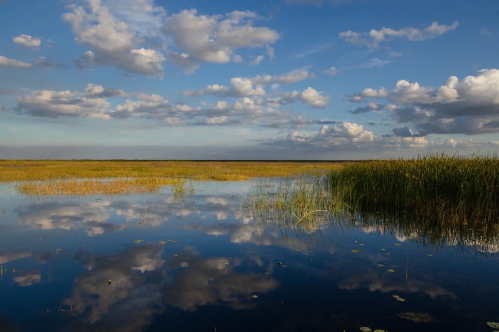 Lake Okeechobee é o segundo maior lago de água doce dentro dos Estados Unidos continental (exceto Alasca e Havaí)