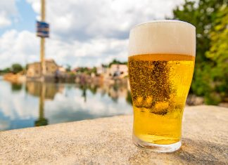 Free-Beer-no-SeaWorld-Orlando