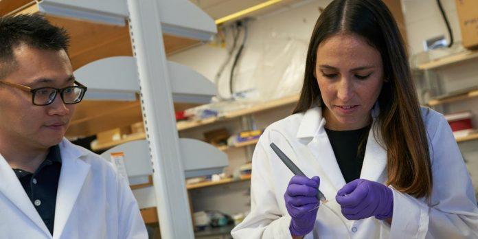 Livia Eberlin chefia laboratório de pesquisa no Texas FOTO John D. e Catherine T MacArthus Foundation CP