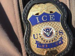 Operação do ICE fracassou devido à massiva divulgaçao (Foto ICE)