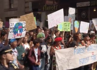 A pressão das ruas pode influenciar a vontade política e promover mudanças para evitar tragédias ambientais (Foto: Reprodução – Twitter ONU)