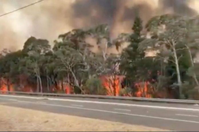A imigrante foi resgatada das chamas pela Patrulha da Fronteira (foto: NSW Rural Fire Service)
