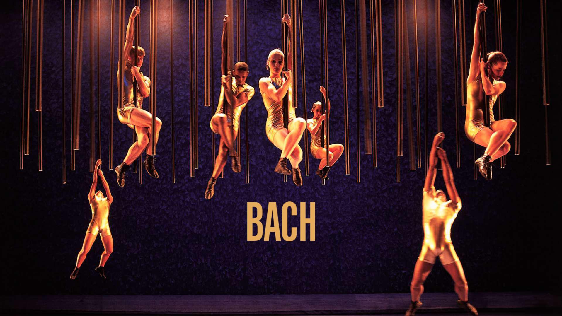 Bailarinos do Grupo Corpo dançam em tubos que se precipitam do teto (Foto: Divulgação)