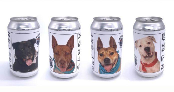 Imagem de latas de cerveja com cachorros disponíveis para adoção (Foto: Reprodução Motorworks)