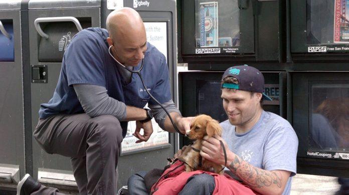 Veterinário percorre as ruas e trata animais gratuitamente na CA (Foto Facebook The Street VET)