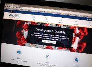 Seção do site do EDD para autônomos pedirem benefício abre dia 28 (Foto: Gabriela Egito)