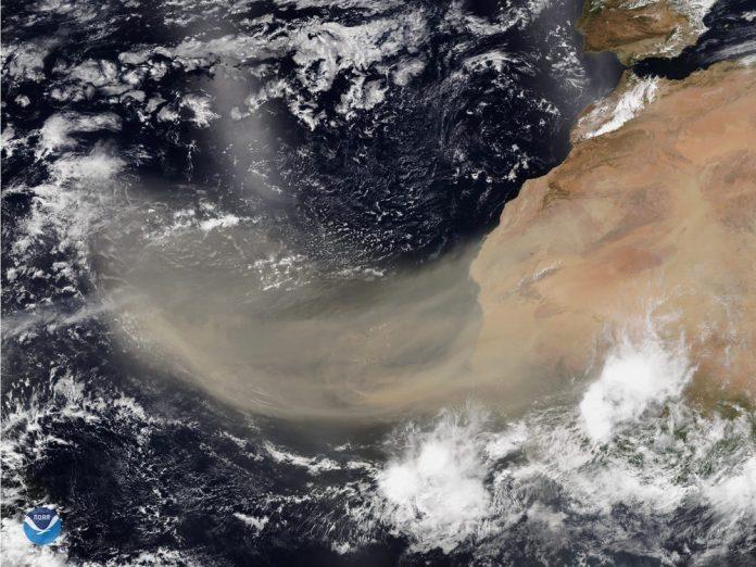 Imagem de satélite da poeira do Sahara (Foto: NOAA)