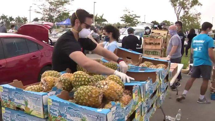 Feeding South Florida distribuiu alimentos para a comunidade (Foto: Reprodução Local10)