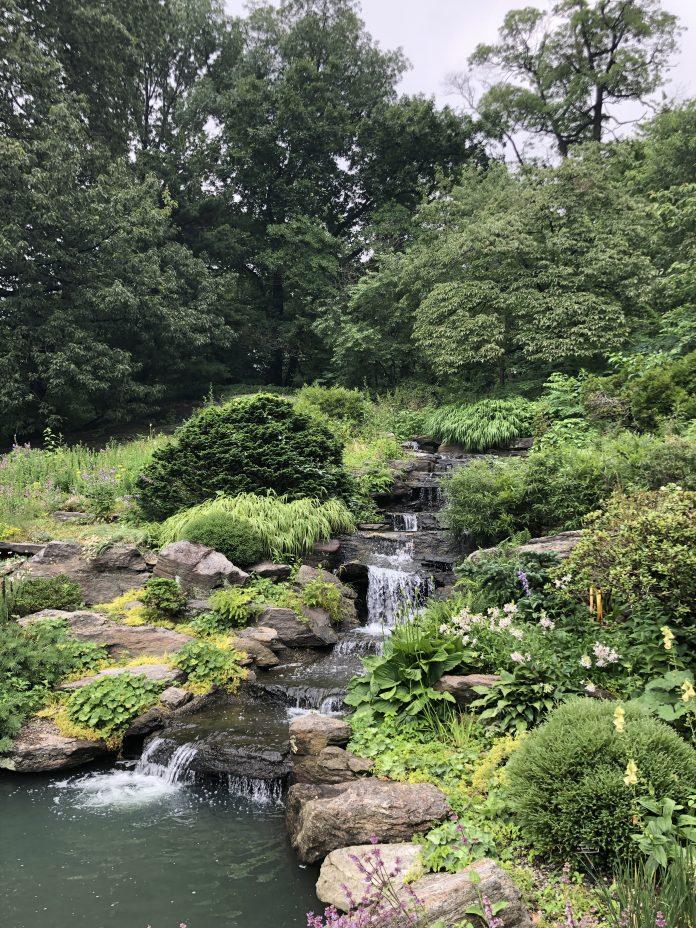 Jardim Botânico de New York, que reabrirá no dia 28 de julho (Foto: Sandra Colicino)