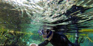 Nascentes naturais com águas cristalinas e incontáveis milhas de costa para explorar