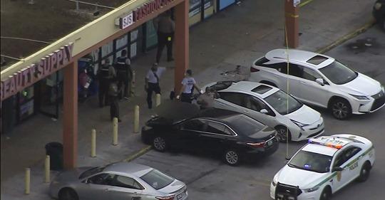 O crime ocorreu no Flea Market localizado no 7900 NW 27th Avenue, em Miami-Dade (foto: captura de tela WPLG-10)