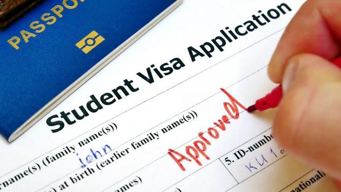 O OPT permite que portadores de vistos de estudante ocupem vagas de trabalho na sua área de estudo (foto: pikabay)