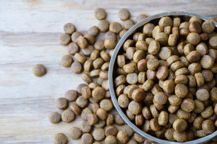 Cinco produtos da Midwestern Pet Food devem ser evitados dispensados (foto: pixabay)