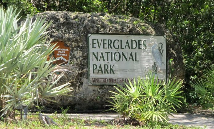 Everglades National Park, Florida (foto: flickr)