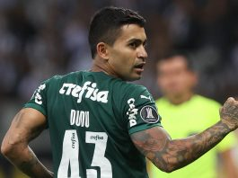 Dudu retornou ao Palmeiras para garantir o Palmeiras na final da Libertadores pelo segundo ano consecutivo (Foto: Cesar Greco/Palmeiras)